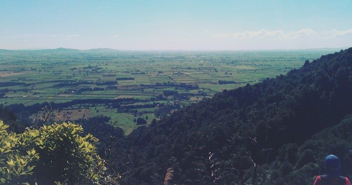 Our view of the Waikato at the top of the Wairere Falls