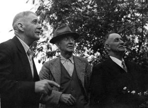 Archibald, William & Donald Baxter, all conscientious objectors (Otago Daily Times)
